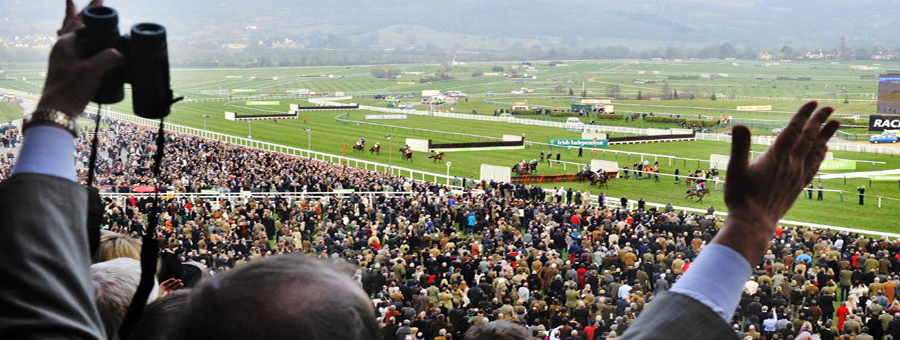 watch cheltenham live streaming open meeeting