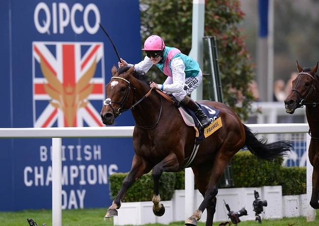Watch Champion Stakes Ascot live stream