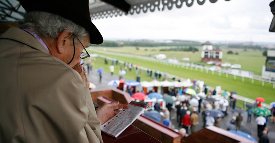 champions day tips