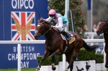 Champions Day at Ascot – Watch Champion Stakes and Cheltenham live streaming